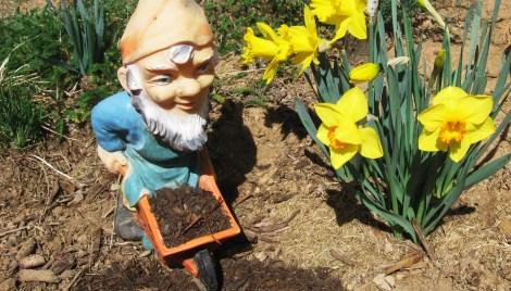 HOMESTEADING Downsized Spring