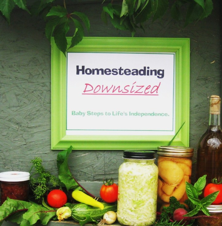 homesteadingdownsized.com