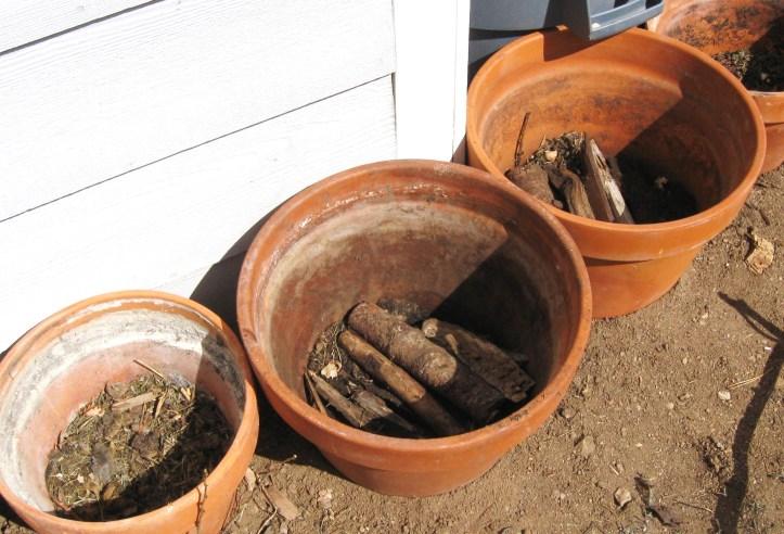 Hugelkultur Container Garden