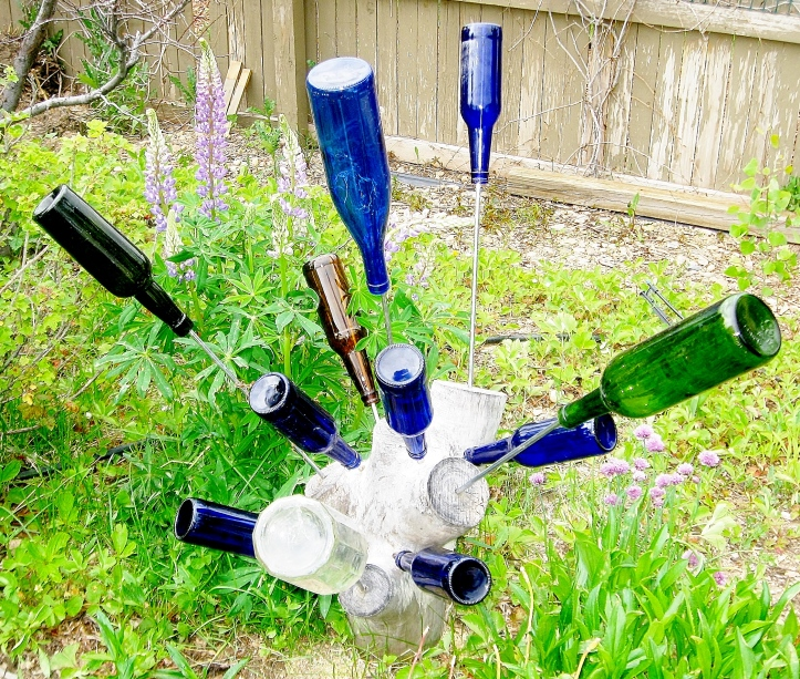 Budding Bottle Tree